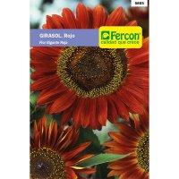 Girasol flor gigante roja      5865