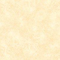 Piso Gresporcelanico Evat  30X60 1.44M2