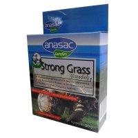Semilla Prado Fina Selección Strong Grass x50g