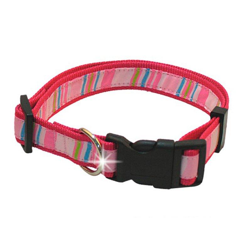 Collar Mascota Colores Talla M